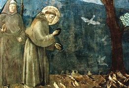 Image result for san francesco cantico delle creature